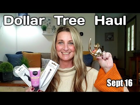 Dollar  Tree  Haul ❤ Sept 16