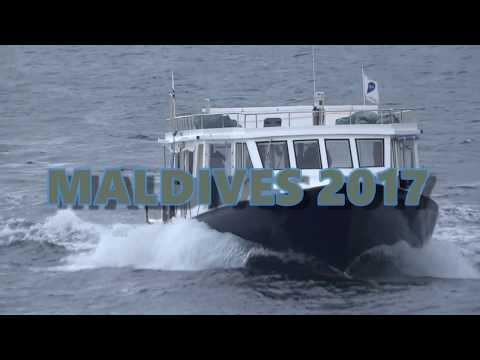 maldives dive trip 2017