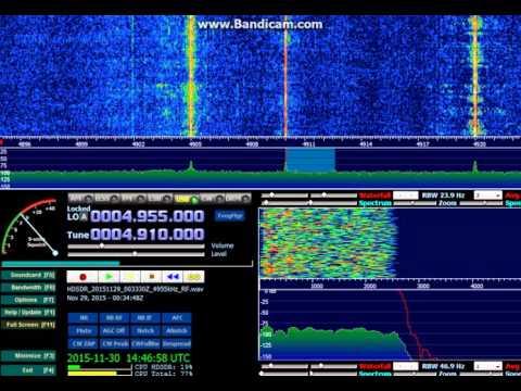 All India Radio Jaipur (Jaipur, Rajasthan, India) - 4910 kHz