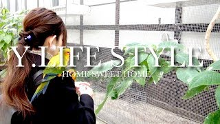 【Vlog】鳥とのふれあいが楽しめる花鳥園&ハンバーグさわやか