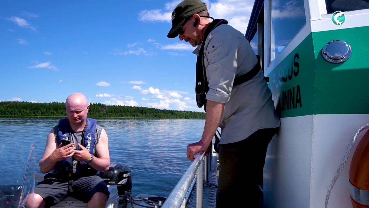 Ainutlaatuisten kalavesiemme valvojat - trailer