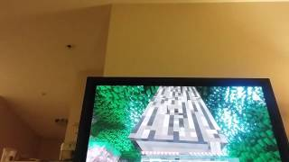 Minecraft video 1st