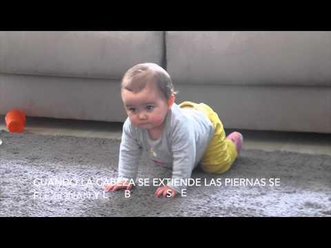 Video los reflejos primitivos del bebe