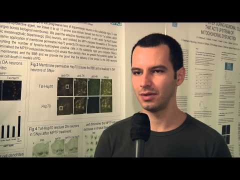 Studying at the University of Goettingen: Vinicius de Toledo Ribas