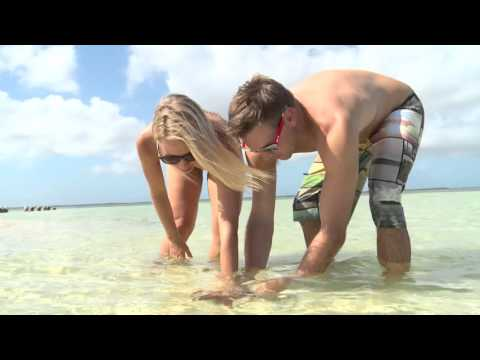 The Cayman Islands for Shore Divers