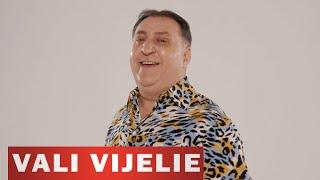 Descarca VALI VIJELIE si LIVIU PUSTIU - Lasa-l sa plece (Originala 2020)