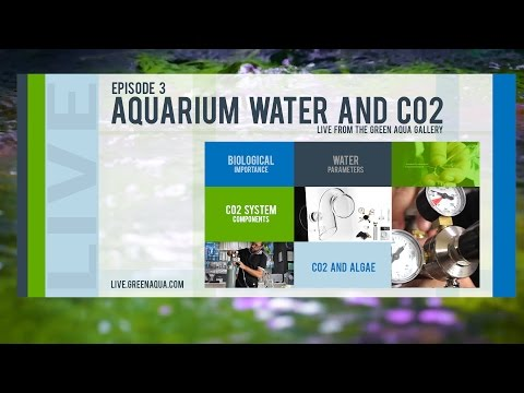 EPISODE 3: Aquarium Water and CO2