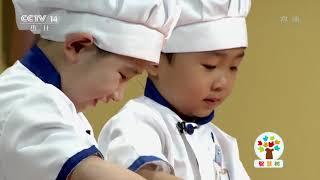 [智慧树]果果美食屋:肉肉总动员之肉脯|CCTV少儿