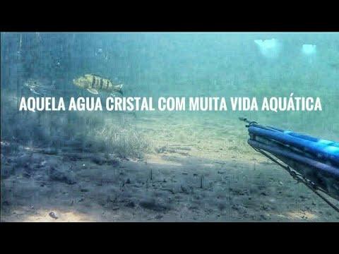 Pesca Sub – Rio Grande – Tilapias – 2019