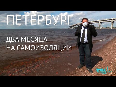 Петербург: два месяца на самоизоляции