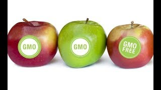 7 GMO Foods You Never Knew About Until Now
