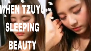 Twice tyuzu with sleeping beauty