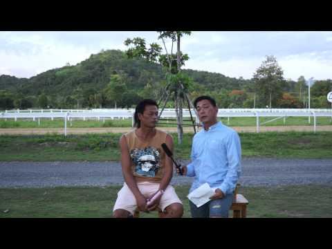 Danthai NewSeason # รีวิวม้าก่อนแข่งถ้วยยอดม้าแข่งแห่งประเทศไทย ปี2558