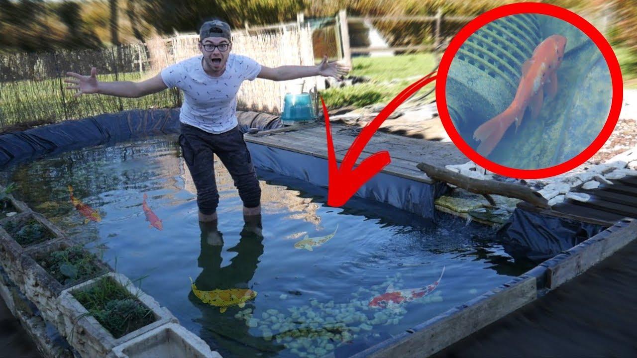 Comment Faire Un Etang Avec Une Bache créer un bassin avec une bache, 2 vidéos explicatives - le