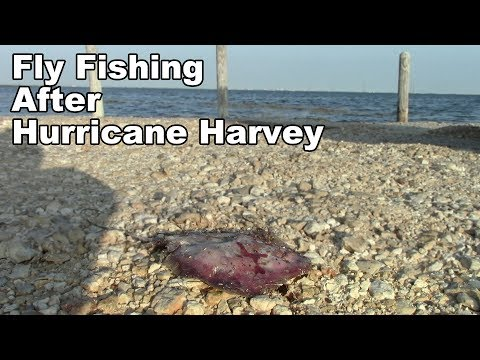 Fishing after Hurricane Harvey! - Gulf of Mexico in Texas - McFly Angler  Episode 32