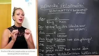 Němčina online: Skloňování v prvním pádu po členu určitém