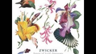 Zwicker - Oddity (ft Olivera Stanimirov - extended version)
