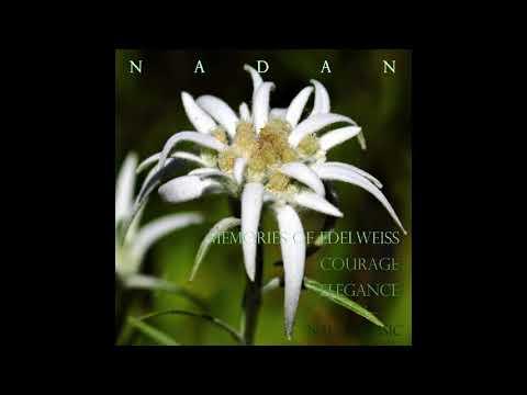 에델바이스 (Edelweiss)-나단(Nadan) /뉴에이지 피아노/재즈힙합/멜로우비트/배경음악/Piano/Newage/HipHop/Beat/BGM_[나단뮤직/NadanMusic]