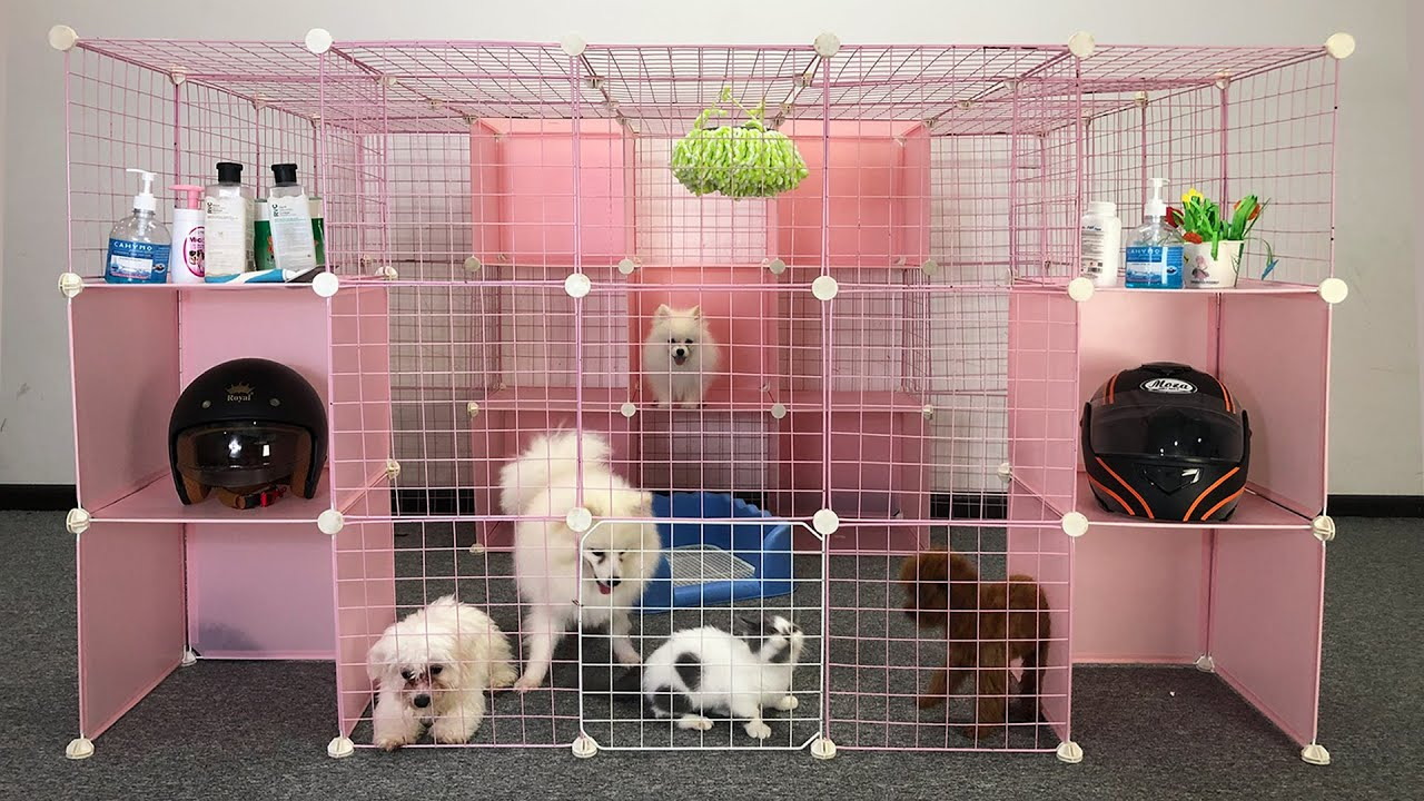 DIY - How To Make Dog House For Pomeranian Puppies With Cube Grid Wire - Cute Kitten - MR PET
