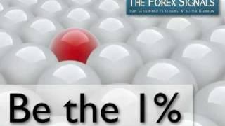 BONUS VIDEO - The Forex Signals Review - Trading With Tom Strignano & Vladimir Ribakov - Part 3 of 3