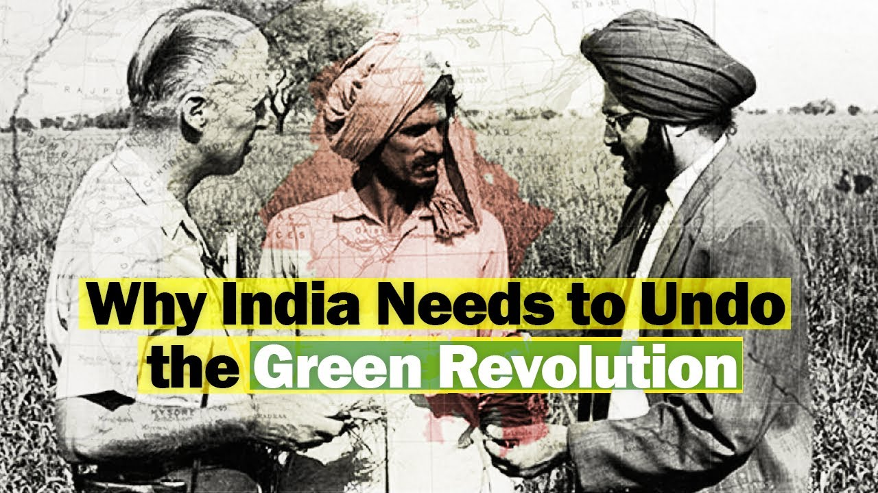 Watch Now | Why India Needs to Undo the Green Revolution