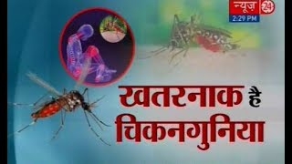 Sanjeevani: Chikungunya symptoms, treatment and prevention