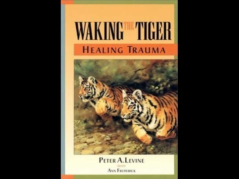 Pdf Waking The Tiger Healing Trauma Youtube