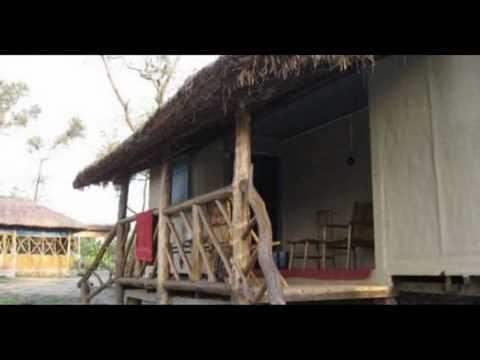 India Assam Kokilabari Manas Maozigendri Jungle Camp India Hotels India Travel Ecotourism