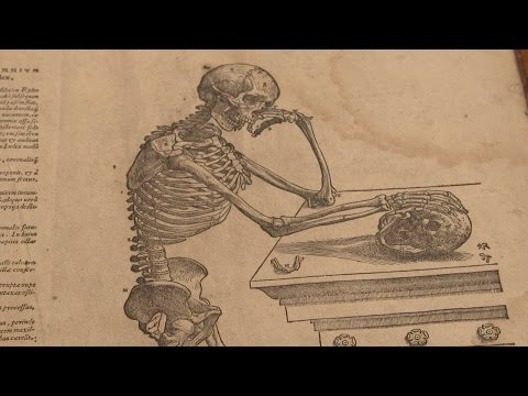 A Revolutionary 16th Century Book on Human Anatomy   Discovery