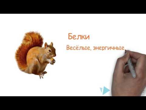 Животные Республики Коми