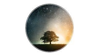 Noctilucent - Stars   HQ
