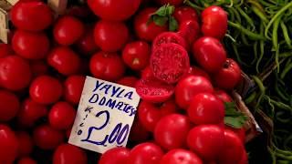 #44 Облава в Анкаре. Кто кушает в Рамадан? Самые низкие цены на рынке. Сколько стоят фрукты в Анкаре
