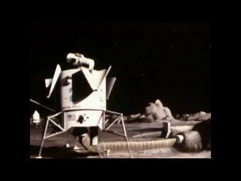 Bauri - Fleck Yck (Unofficial Video)