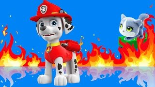 Щенячий патруль. Маршал спасает котенка и тушит пожар. Лучший пожарный города