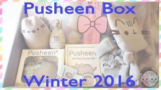PUSHEEN BOX WINTER 2016 UNBOXING, REVIEW - SUGARCODER