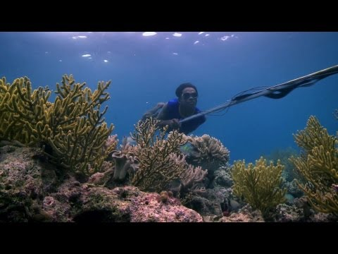 Bajau people of the Banda Sea - Rise of the Continents - Episode 2 Preview - BBC Two