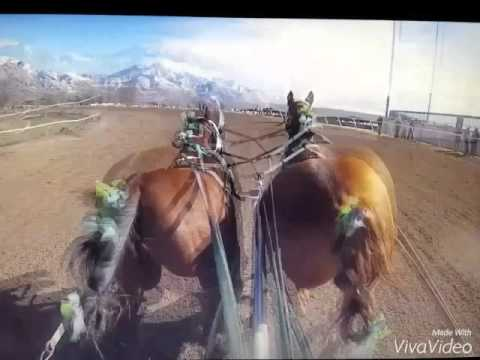 Utah state championship chariot races day 2 2016