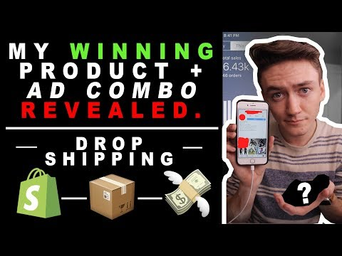 My WINNING Shopify Dropshipping Product + THE AD I RUN | *Revealed* (Easy $100 every day)