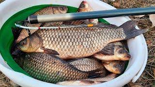 КАРАСЬ В КАМЫШЕ НА БОКОВОЙ КИВОК ЛОВЛЯ КАРАСЯ ВЕСНОЙ 2021 рыбалка на карася 2021