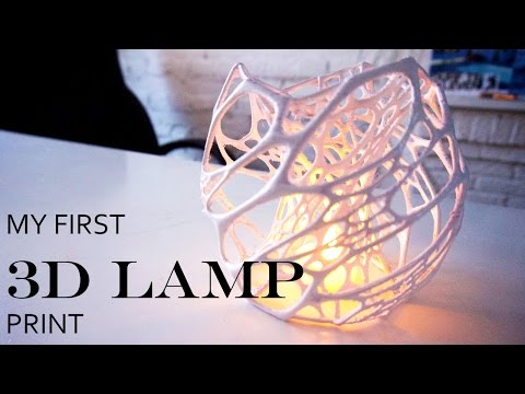 My First 3D Printed Lamp With My New  3D Printer (CRAFTBOT PLUS)