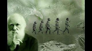 Наука и религия. Теория эволюции Дарвина