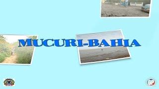 MUCURI BAHIA