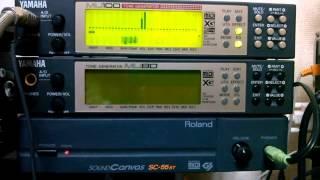 Yamaha CBX/DB/MU/PLG/RM/R50/SYXG