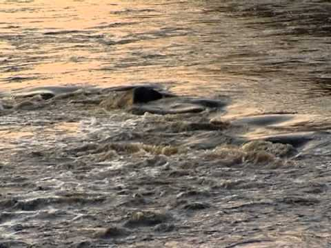 7 чудес Красноярского края: Больше, чем река...