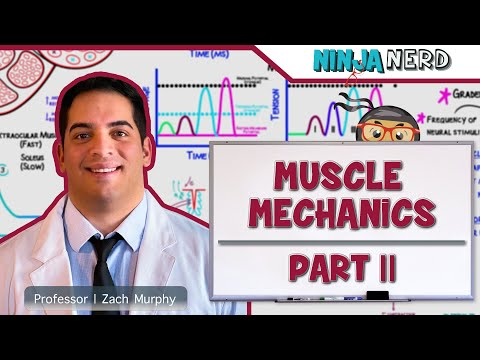 Myology | Muscle Mechanics | Multiple Motor Unit Summation | Part 2