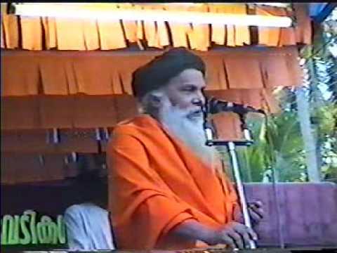 Jagadguru Swami Satyananda Saraswathi 2