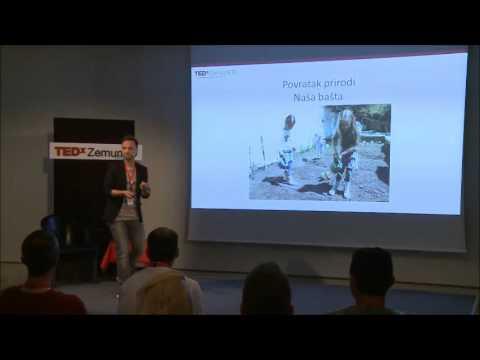 Škole bez zidova | Marko Đorđević | TEDxZemunED