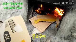 [원주감악산황토방민박] 군고구마 체험^^