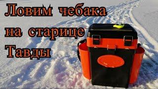 Ловим плотву чебака на старице Тавды лёд 2019 NIK_72