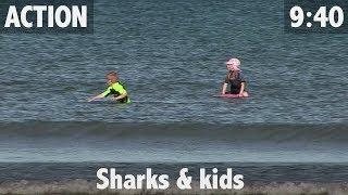 SHARKS & KIDS